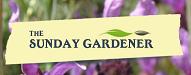 sunday gardener